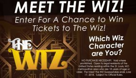 meet the wiz