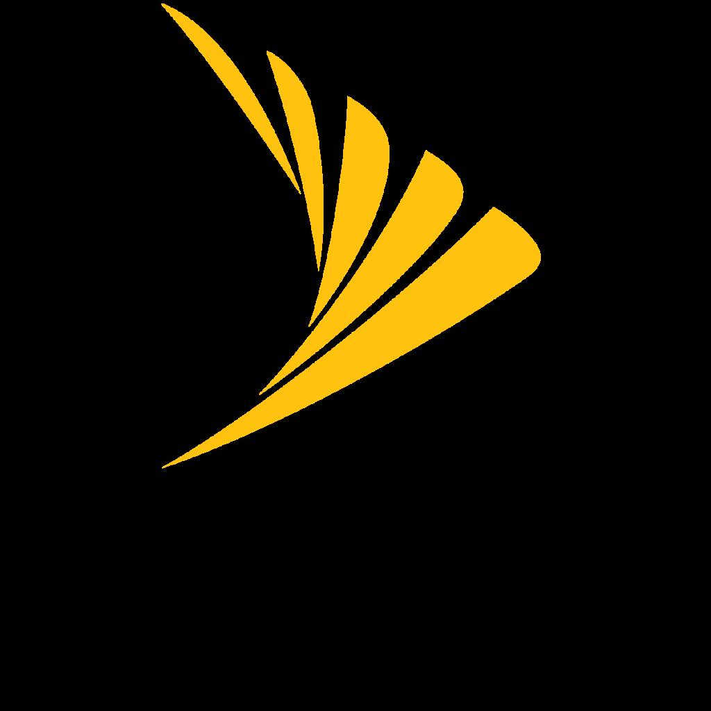 Sprint Remote November 2018