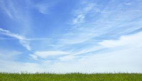 Blue sky over grassy field